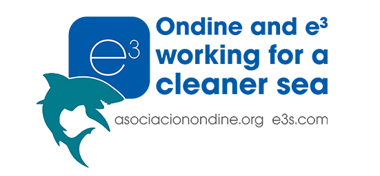 Ondine and e3s working for a cleaner sea